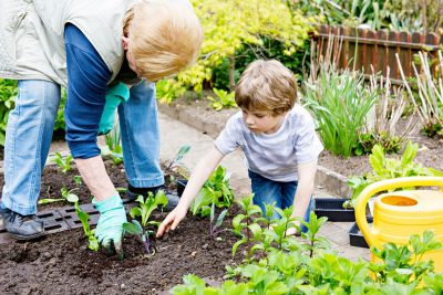 grandma and Grandson Gardening